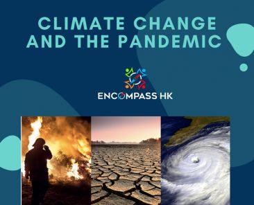 Copy of Climate change and the pandemic